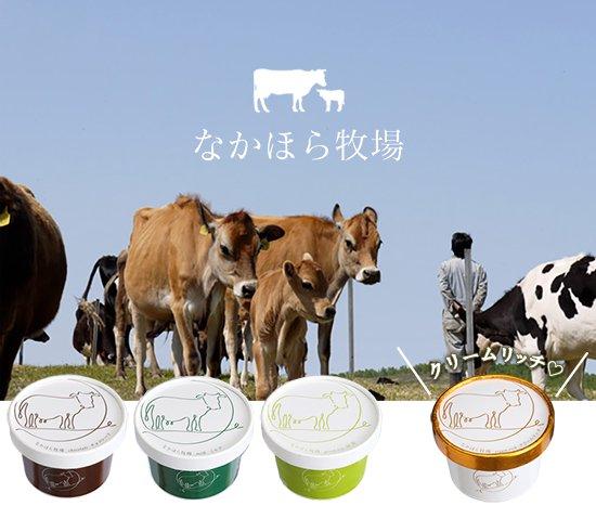 中洞牧場 ミルクアイス チョコレート 【 岩手県 】【画像5】