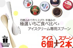 アイス専用スプーンとアイスのセット(ギフト最適) 極選いちご 食べ比べ+アイスクリーム専用スプーン セット(6個+2本)