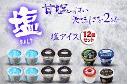 塩アイス 特設ページ 塩アイスセット+お口直し品(12個セット)