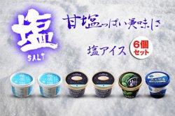 濃厚 バニラアイスクリーム 塩アイスセット+お口直し品(6個セット)