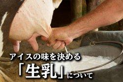 生産者_つじり 【福岡県】 アイスの味を決める生乳について