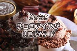 読み物 どっちのチョコアイスが美味しそう!?(DARI−K)