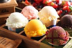 濃厚 バニラアイスクリーム おいしいアイスを旅しよう!