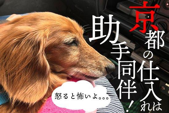 祇園辻利アイスの仕入れで京都へ!