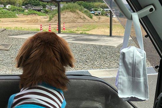 祇園辻利アイスの仕入れで京都へ!【画像9】