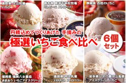 イメージ動画 極選 いちごアイスクリーム セット (6個セット)