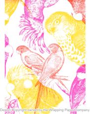 212 Eco Australian Birds 50cm巾<img class='new_mark_img2' src='https://img.shop-pro.jp/img/new/icons32.gif' style='border:none;display:inline;margin:0px;padding:0px;width:auto;' />