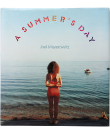 A SUMMER'S DAY Joel Meyerowtiz