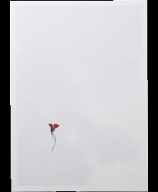 【再入荷】FLOWER
