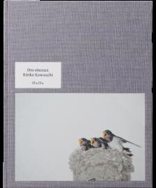 Des Oiseaux - Rinko Kawauchi