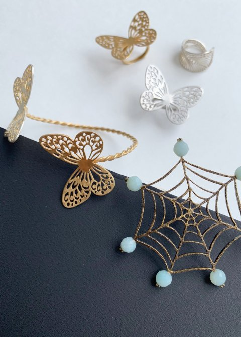 蝶々と蜘蛛の巣