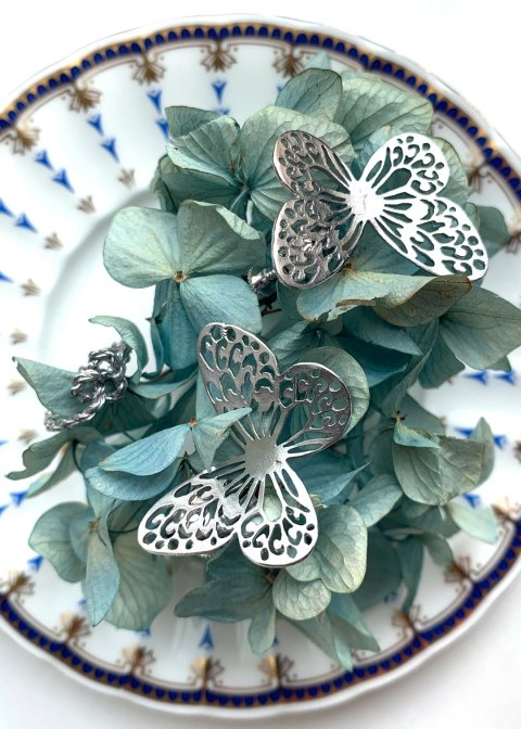 蝶とロープハート(イヤリング・リング)