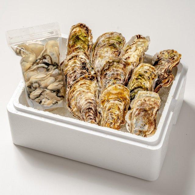 【おうちでカキまつり対象】殻付き牡蠣10コ・むき牡蠣500gセット[加熱用]【送料込】