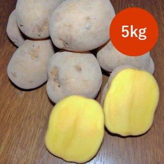 北海道美瑛町産じゃがいも(インカのめざめ/サイズ混合)5kg