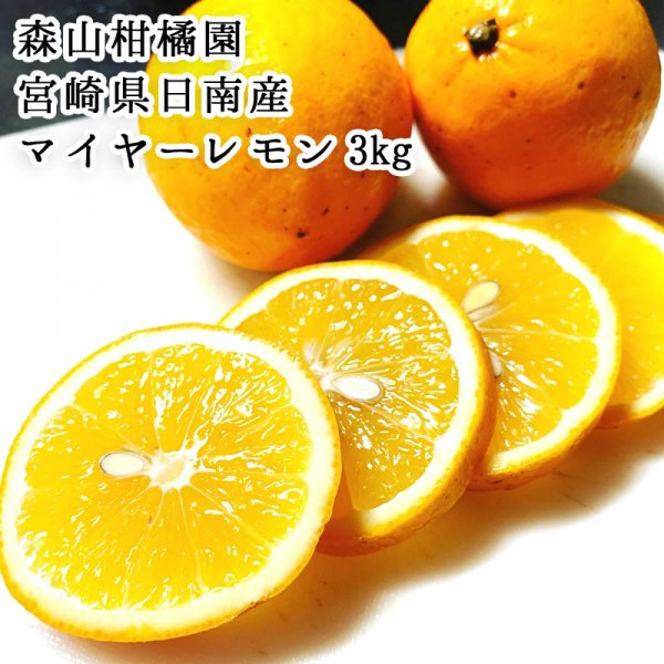 【宮崎産地直送】宮崎県日南産マイヤーレモン(グリーン)  3�  森山柑橘園 季節限定