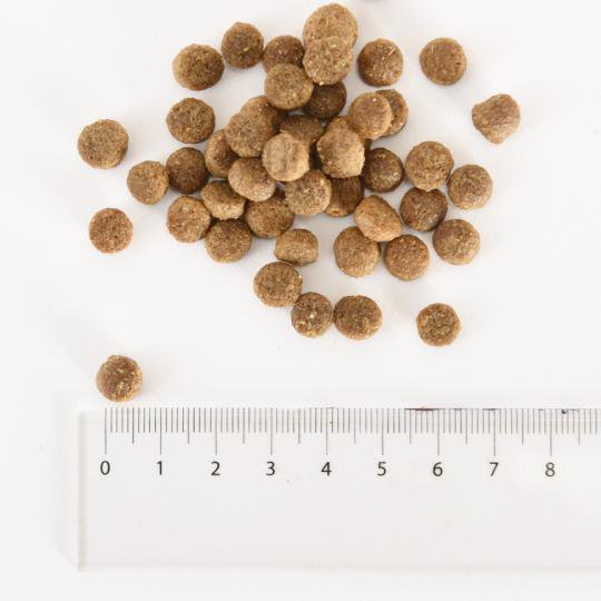 [イメージ] 玄米&チキン小粒タイプ6kg