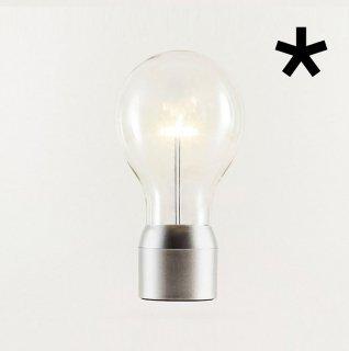 Flyte(フライト)用電球