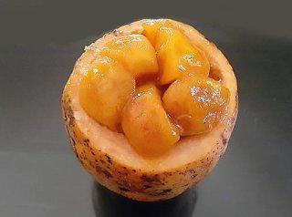 モッドフルーツの種