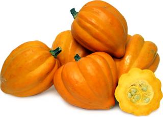 ゴールデンテーブルかぼちゃの種