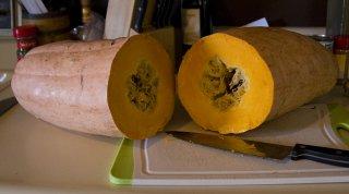 ピンクバナナかぼちゃの種