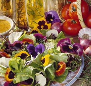エディブルフラワーミックス(食用花16品種)の種