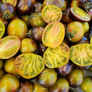 アトミックフュージョントマトの種