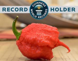世界で最も辛いトウガラシ「トップ10」セット