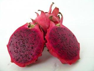 パープルピタヤ(ドラゴンフルーツ)の種