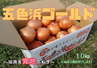 【送料無料!】五色浜ゴールド10キロ
