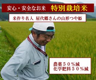 30年度産 屋代郷さんの 特別栽培米 山形つや姫(農薬50%減・化学肥料50%減)1kg