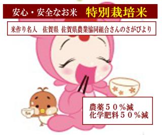30年度産 佐賀県農業協同組合さんの 特別栽培米 佐賀さがびより(農薬50%減・化学肥料50%減)1kg