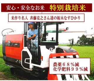 令和元年度産 斉藤克之さん達の 特別栽培米 栃木なすひかり(農薬75%減・化学肥料99%減)1kg