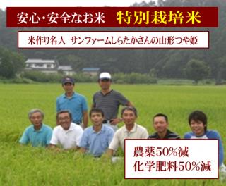 令和元年度産 サンファームしらたかさんの 特別栽培米 山形つや姫(農薬50%減・化学肥料50%減)1kg