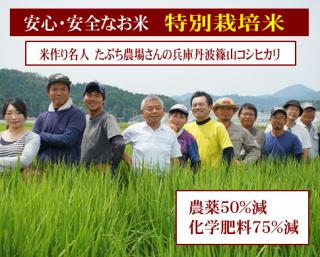 令和二年度産 たぶち農場さんの 特別栽培米 兵庫篠山コシヒカリ(農薬50%減・化学肥料75%減)1kg
