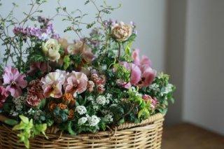 【1点もの】取手付きバスケットのバラ咲きジュリアン「ショコラ」のブリコラージュフラワー