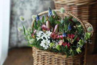 【1点もの】星咲ふくりんりんと春の草花のバスケットブリコラージュ