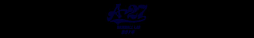 野球用品専門店 野球工房A27 本店