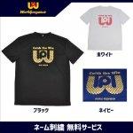 野球 ワールドペガサス worldpegasus Tシャツ WAPTS8F ネーム刺繍無料