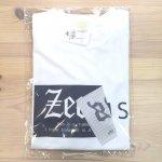 野球 ジームス ZEEMS Tシャツ ドライTシャツ ZW21-01 2021年限定Tシャツ