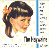 THE HAYWAINS / WHY DO I GET THE FEELING YOUR MOTHER HATES ME  (7