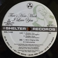 BIG MOSES / THAT'S HOW MUCH I LOVE YOU (12