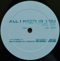 Unknown Artist / All I Need Is You (12