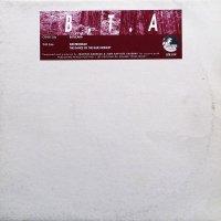 B.T.A / Batucada (12