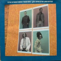 BRAND NEW HEAVIES / YOU ARE THE UNIVERSE (12
