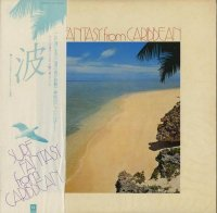 波 / Surf Fantasy From Caribbean (LP)