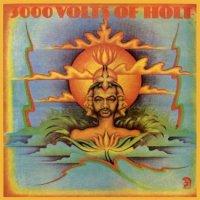 JOHN HOLT / 3000 Volts of Holt(LP)