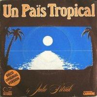 Julie Sitruk / Un Pais Tropical (7