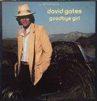 David Gates / Goodbye Girl (LP)