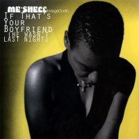 Me'Shell NdegeOcello / If That's Your Boyfriend (12