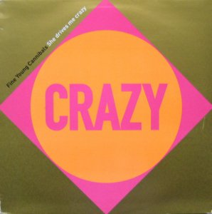 Fine Young Cannibals / She Drives Me Crazy (12
